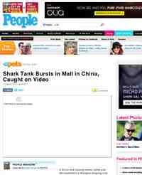 Shark Tank Bursts in Mall in China Caught: People Magazine